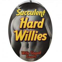 HARD WILLES SUCCULENT